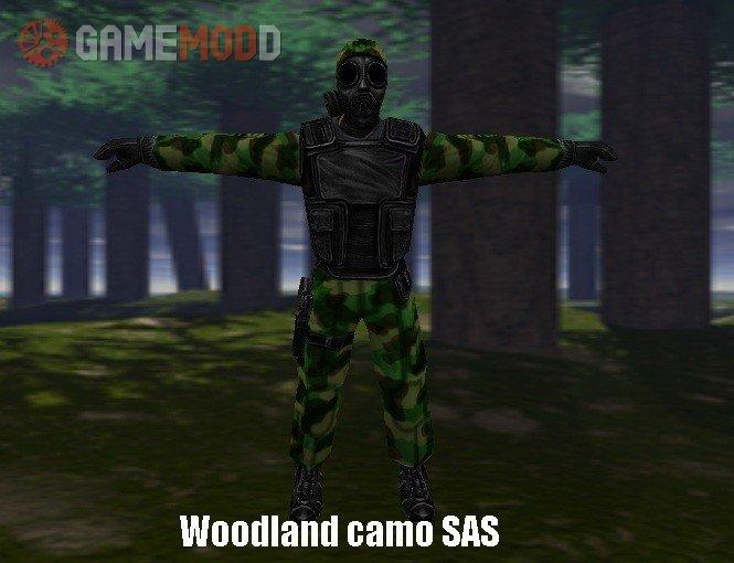 Woodland camo SAS