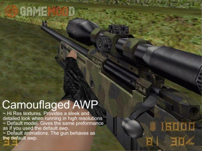 Camouflaged AWP