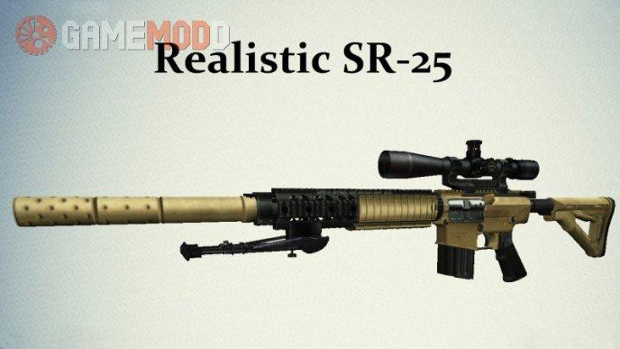 Realistic Desert SR-25