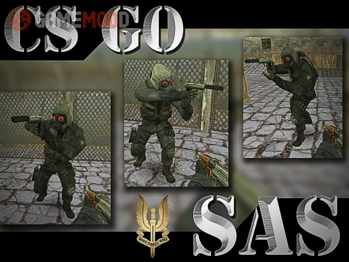 CS GO SAS TEAM