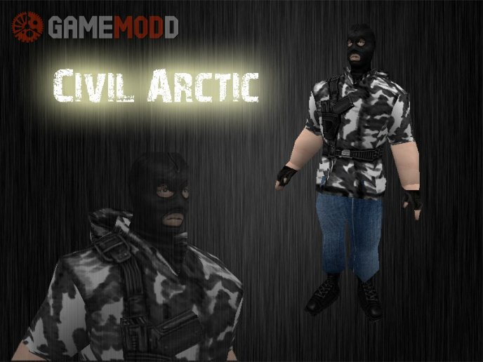 Civil Arctic