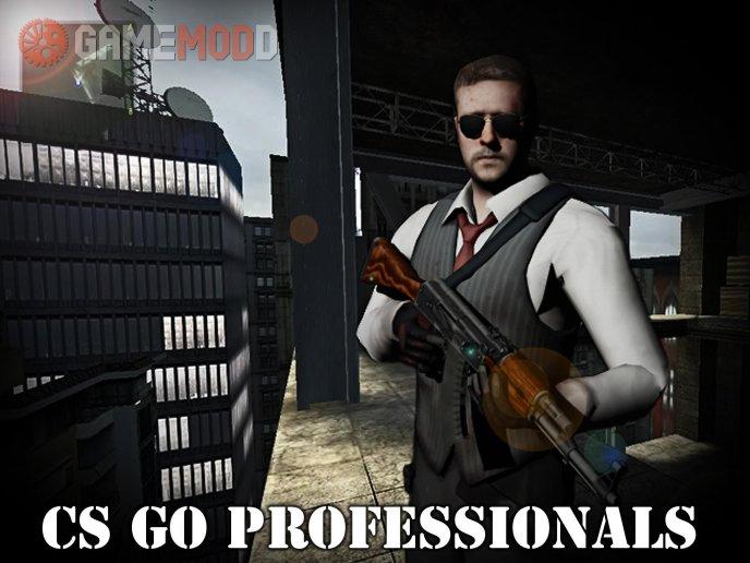 CS GO PROFESSIONALS