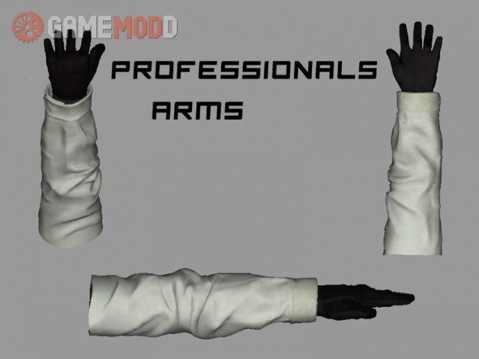 CS:GO Professionals Arms