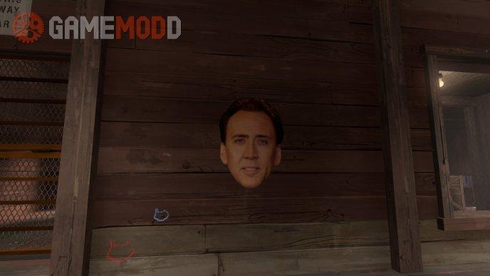 Nicolas Cage's head