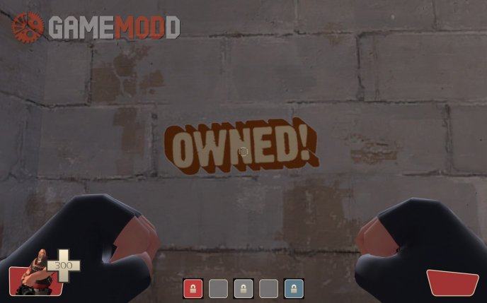 TF2 Style Owned!