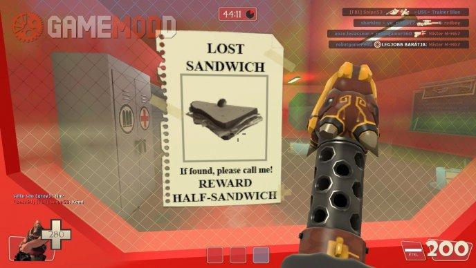 LOST SANDWICH!
